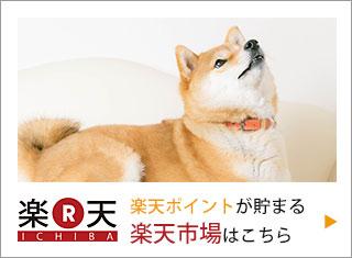 獣医師・宿南章の愛情ごはん療法食【楽天市場】